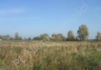 Działka na sprzedaż, Chrzanów Mały, 10000 m² | Morizon.pl | 2918 nr4