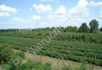 Działka na sprzedaż, Grójec, 23200 m² | Morizon.pl | 3983 nr7