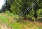 Działka na sprzedaż, Zalesie, 1000 m² | Morizon.pl | 8551 nr10