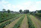 Działka na sprzedaż, Grójec, 23200 m² | Morizon.pl | 3983 nr11