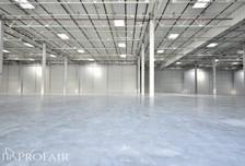 Magazyn do wynajęcia, Kowale, 2700 m²