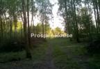 Działka na sprzedaż, Bramki, 77200 m² | Morizon.pl | 5000 nr10