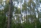 Działka na sprzedaż, Bramki, 77200 m² | Morizon.pl | 5000 nr11
