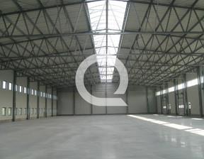 Magazyn, hala do wynajęcia, Gdańsk Osowa, 2000 m²