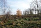 Działka na sprzedaż, Mokas Białowiejska, 9000 m² | Morizon.pl | 5918 nr7