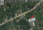 Morizon WP ogłoszenia | Działka na sprzedaż, Rusiec Górna, 28700 m² | 8071