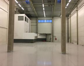 Magazyn, hala do wynajęcia, Warszawa Białołęka, 25000 m²