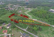 Działka na sprzedaż, Zawodzie Cicha, 11890 m²