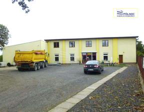 Lokal użytkowy na sprzedaż, Szprotawa Żagańska, 680 m²