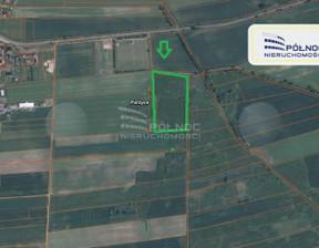 Działka na sprzedaż, Parzyce, 22300 m²