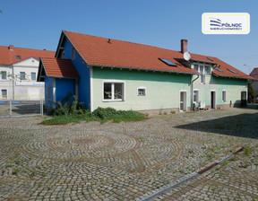 Dom na sprzedaż, Czerna, 450 m²