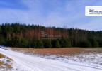 Działka na sprzedaż, Żdżary, 36600 m²   Morizon.pl   8159 nr2