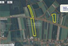Działka na sprzedaż, Szczytnica, 118000 m²