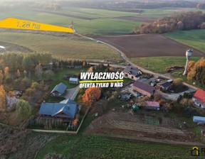Działka na sprzedaż, Przęsocin, 12800 m²