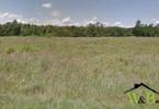 Morizon WP ogłoszenia | Działka na sprzedaż, Połomia, 9200 m² | 8421