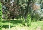 Dom na sprzedaż, Popowo Kościelne, 650 m²   Morizon.pl   9995 nr10