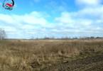 Morizon WP ogłoszenia | Działka na sprzedaż, Piotrowo, 40000 m² | 0108