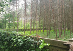 Działka na sprzedaż, Kicin koło Poznania, 8500 m²   Morizon.pl   9535 nr7