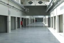 Magazyn, hala do wynajęcia, Poznań, 100 m²