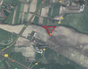Działka na sprzedaż, Nagradowice, 50136 m²