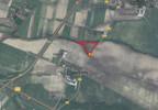 Działka na sprzedaż, Nagradowice, 50136 m² | Morizon.pl | 9056 nr2
