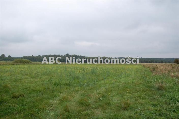 Działka na sprzedaż, Płytnica, 28000 m² | Morizon.pl | 3234