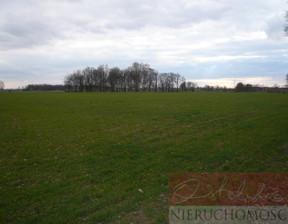 Działka na sprzedaż, Śliwno, 39435 m²