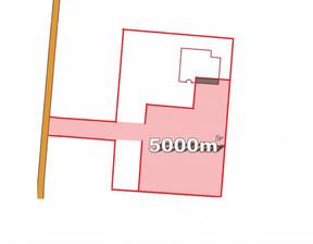 Działka do wynajęcia, Poznań Rataje, 5000 m²