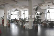 Biuro do wynajęcia, Wrocław Szczepin, 235 m²