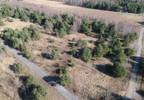 Działka na sprzedaż, Leszno, 3377 m² | Morizon.pl | 1442 nr8