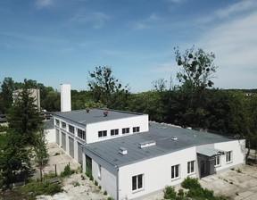 Magazyn, hala do wynajęcia, Skarbimierz Kasztanowa 21, 245 m²