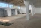 Magazyn, hala do wynajęcia, Skarbimierz Kasztanowa 21, 245 m²   Morizon.pl   6780 nr14