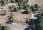 Działka na sprzedaż, Szymanówek, 3018 m²   Morizon.pl   1484 nr12