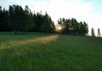 Działka na sprzedaż, Młynowiec, 56800 m² | Morizon.pl | 0157 nr4