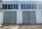 Magazyn, hala do wynajęcia, Skarbimierz Kasztanowa 21, 245 m²   Morizon.pl   6780 nr8