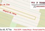 Działka na sprzedaż, Pałczew, 7000 m² | Morizon.pl | 8479 nr4
