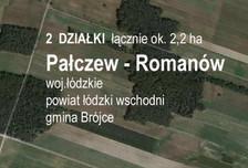 Działka na sprzedaż, Pałczew, 15000 m²