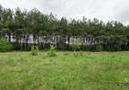 Działka na sprzedaż, Warszówka, 12200 m² | Morizon.pl | 7395 nr2
