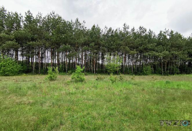 Morizon WP ogłoszenia   Działka na sprzedaż, Warszówka, 12200 m²   3355
