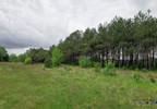 Działka na sprzedaż, Warszówka, 12200 m² | Morizon.pl | 7395 nr3