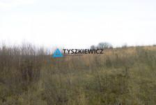 Działka na sprzedaż, Lisewiec Ustronna, 4600 m²