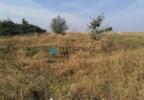 Działka na sprzedaż, Czarnylas, 5000 m² | Morizon.pl | 8271 nr7