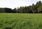 Działka na sprzedaż, Kiczyce Kormoranów, 8848 m² | Morizon.pl | 4189 nr4