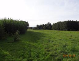Morizon WP ogłoszenia | Działka na sprzedaż, Kiczyce Kormoranów, 8848 m² | 0149