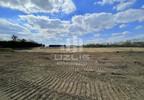 Działka na sprzedaż, Linowiec, 10000 m² | Morizon.pl | 3890 nr18