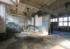 Działka na sprzedaż, Skibno, 37100 m² | Morizon.pl | 8410 nr9
