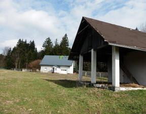 Działka na sprzedaż, Łężyce Góry Stołowe, 87700 m²