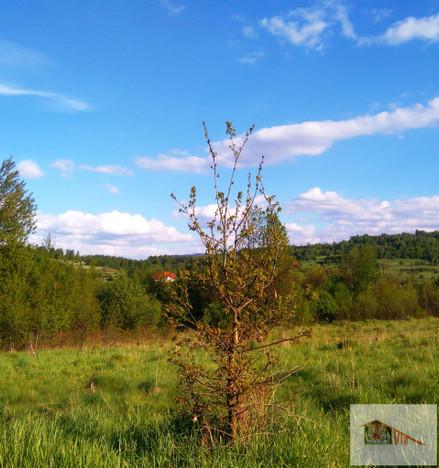 Działka na sprzedaż, Grzechynia, 2686 m² | Morizon.pl | 2687
