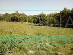 Morizon WP ogłoszenia   Działka na sprzedaż, Kozery, 3159 m²   9413