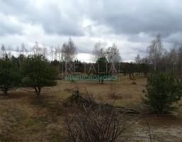 Morizon WP ogłoszenia | Działka na sprzedaż, Stare Budy Radziejowskie, 90000 m² | 9823